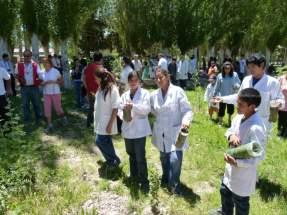 Los chicos plantaron distintas especies arbóreas